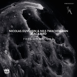 Free Download Nicolas Duvoisin & Nils Twachtmann